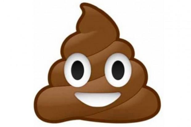 Az egyik legnépszerűbb emoji, a kaka. Rendszámon aligha jelenhet meg.