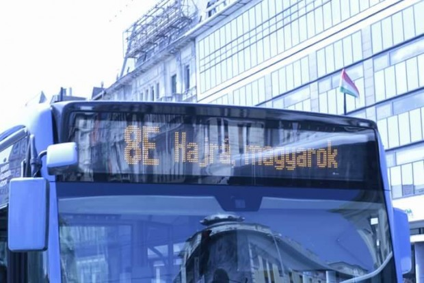 A magyar válogatottnak köszönhetjük a nap képét
