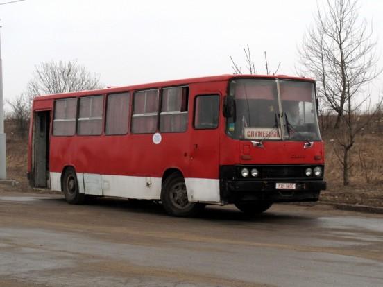 Ezt az Ikarus 260-ast Fehéroroszországban kapták lencsevégre. Érdekessége, hogy az első ajtó, valamelyik távolsági kivitelű Ikarusról kerülhetett fel a járműre. A 1981-ben készült autóbusz egyébként nincs rossz állapotban.