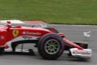 F1: Az öngyilkos sirályok miatt nem nyert Vettel?
