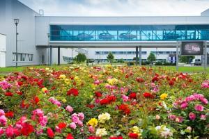 Kivirágoznak a Kia gyárai