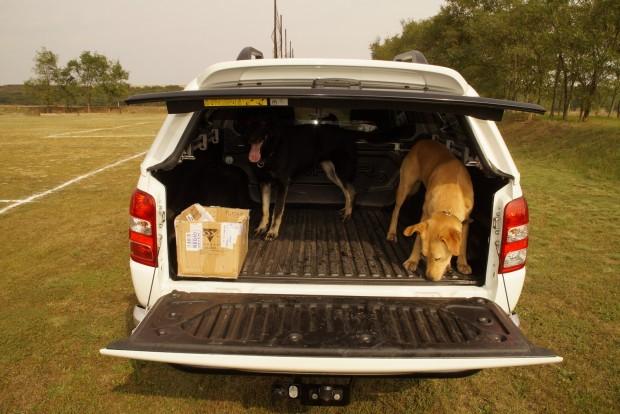 Ideális kutyásautó, a kabinban nincs nyál vagy kutyaszag