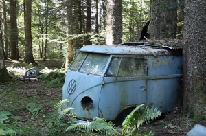 Zseniális film egy erdőből mentett 1955-ös Volkswagenről