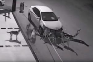 Félelmetes, ami éjszaka történt ezzel az autóval