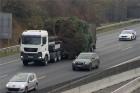 Úton az ország karácsonyfája, nézd meg a fotókat