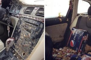 Életed hibáját követed el, ha kólát hagysz az autóban ilyen hidegben