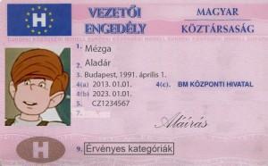 34 évet vezetett jogosítvány nélkül a magyar férfi