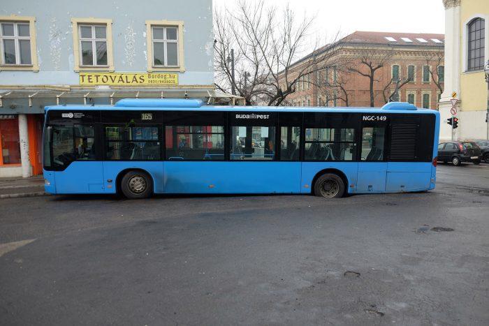 FUJI4868