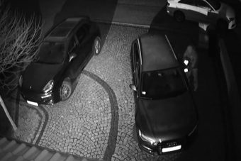 Félelmetes videó, fél perc alatt lopják el az Audit