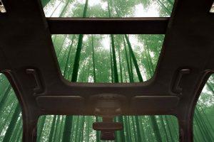Bambuszból készül a jövő autója