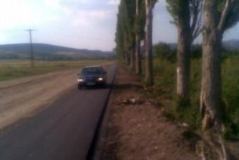 Egerben autós bitorolja a félkész bringautat