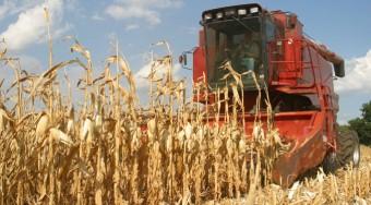 Veszélyes a bioetanol?