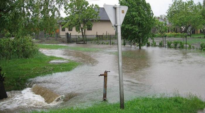 Ászár, a 81-es út mentén Fotó: Molnár Attila (Tarjáni)