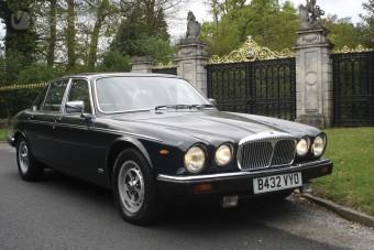 Királyi Jaguar a piacon