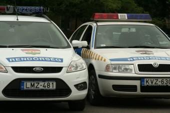 Használtteszt: Ford- és Skoda-rendőrautók
