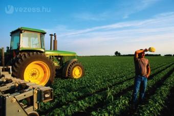 Káros a környezetre a bioüzemanyag