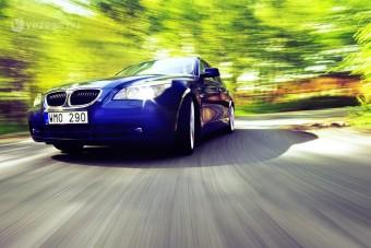 Magyar erdő a káros autók ellen