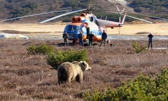 Benzingőzfüggő orosz medvék