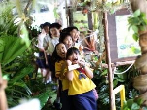 Mobil dzsungel városlakó gyerekeknek