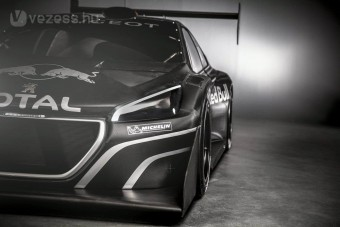 1000 LE-s Peugeot Sebastien Loebnek
