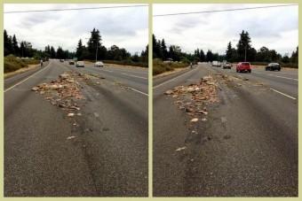 Állati tetemekkel szórta meg az autópályát a kamion