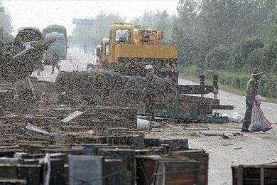 2008. szeptemberében Kínában ütközött és borult fel egy méhszállító teherautó. Itt három embert agyoncsíptek a méhek.