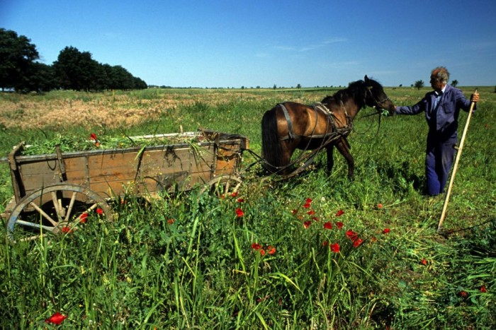 2. Bulgária, 187 liter. Az Európai Unió országai között Bulgáriában a második legalacsonyabb az átlagos jövedelem, ami a második legalacsonyabb benzinkvótára elég