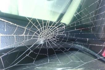 Suzuki visszahívás: támadnak a pókok!