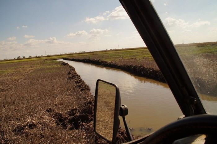 A régészek kutatóárkait feltöltötte a csapadékvíz - egyébként nem találtak semmit