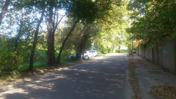 A megállást tábla nem tiltotta, parkolási zónát sem útburkolati jel, sem felfestés, sem tábla nem jelezte, az autók pedig az úttestet elhagyva várakoztak.