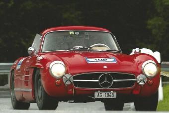 Sirályszárnyú Mercedes természetes közegében