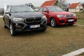 Egy évet kell várni a 41 milliós BMW-re