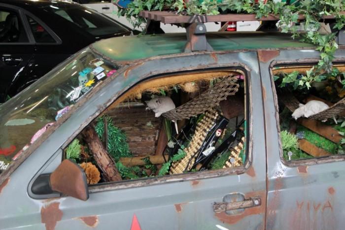 A patkányok átvették az uralmat ennek a Volkswagennek az utasterében.