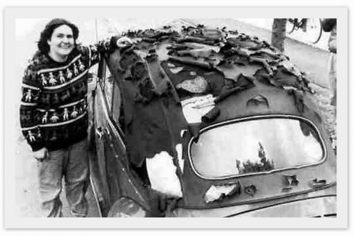 1984. július 12.: egy gigantikus jégeső mintegy 200 000 autót rongált meg az Allianznak otthont adó Münchenben. A cég ideiglenes irodákat állított fel, villámtempóban bírálta el a kárigényeket, és egy hónap alatt 180 millió márkát fizetett ki a károsultaknak.