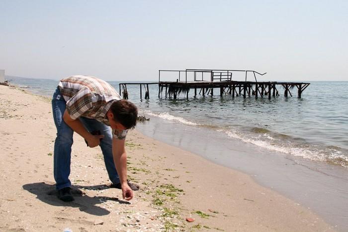 Tamás kagylót gyűjt. Nem saját célra, hanem rendelésre.