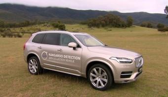 Kengurufelismerőt fejleszt a Volvo