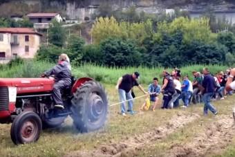 30 ember próbálja meg elhúzni a traktort