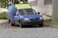 Olyan rég parkol Miskolcon egy Suzuki, hogy kinőtt belőle egy növény 4