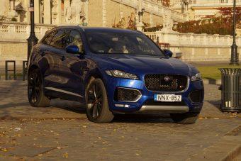 Oroszlánszívű Jaguar, kicsit molyrágta belsővel
