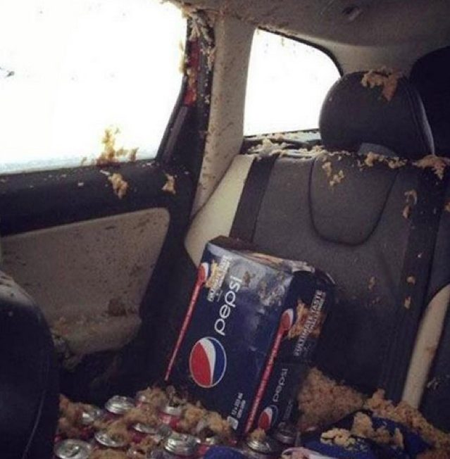 this-is-why-you-dont-want-to-leave-soda-in-your-car-over-night-91430_1