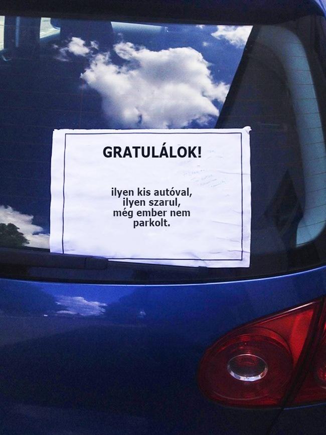Kis-autóval-szarul-parkolva