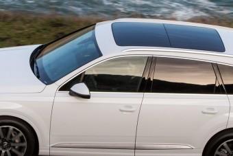 Audival ne parkolj árnyékba!