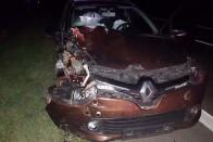 Igazán ritka felvétel készült egy autó előtt átugró szarvasról Borsodban 1