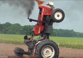 India traktoros trükkjén ámul a világháló népe
