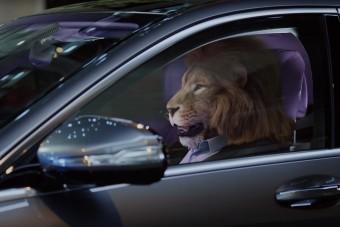 Frusztrált oroszlánt nyugtat a Mercedes