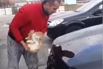 Macskával mosta le autóját ez az orosz férfi