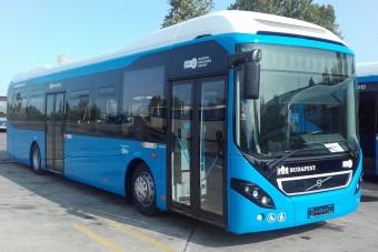 Halkan indulnak el Budapest újonnan forgalomba állított buszai