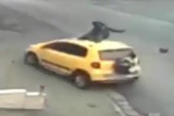 Az áldozattal a tetőn menekült a gázoló