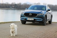 100 év Mazda szabadidő-autói 6