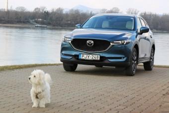 Jó ez a Mazda, csak egy turbó kéne rá